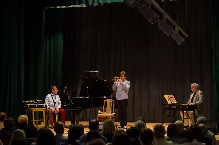 Koncertai ir šviesų performansas